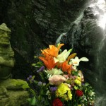 offering flowers to the waterfall kami